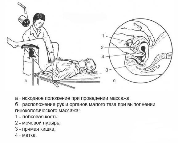 Во время секса массаж матки